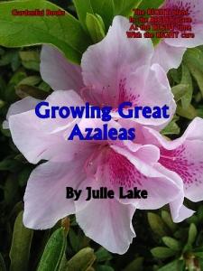 Azalea cover