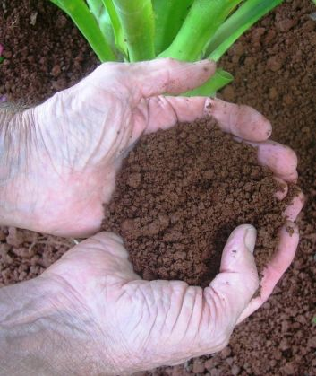 A soil for all seasons