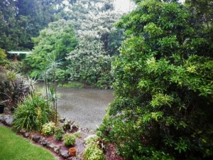 When the rain is pounding down, plants get a hammering and soil washes away