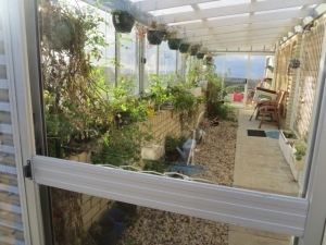 One of Rhonda's favourite places, the warm and sunny conservatory on one side of the house