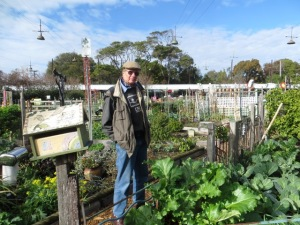 Bob wishes he could grow vegies like this
