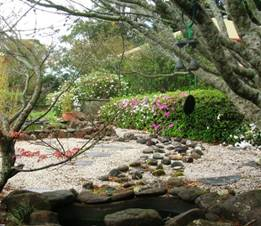 Sometimes the best gardening ideas are the simplest...rocks, pebbles and a few green plants