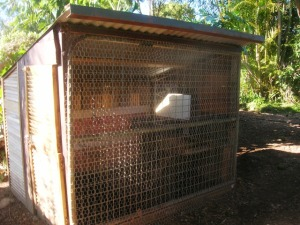 A chicken house made from recycled materials